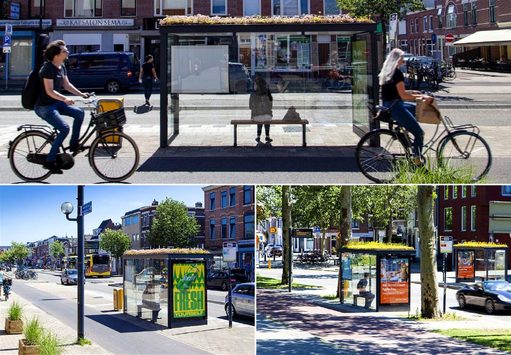 เนเธอร์แลนด์เปลี่ยนป้ายรถเมล์ให้กลายเป็นบ้านของผึ้ง