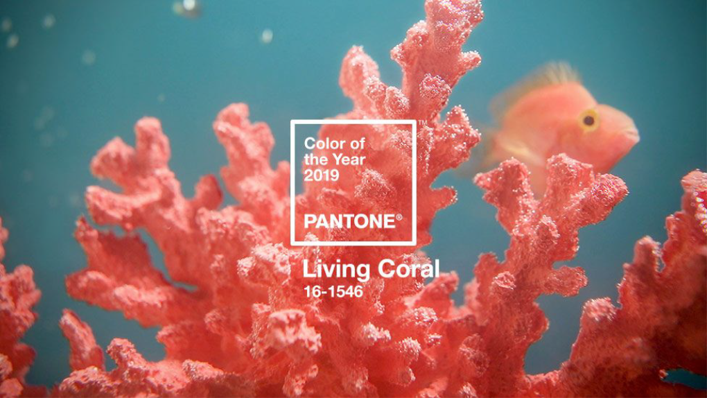 Living Coral (PANTONE 16-1546)