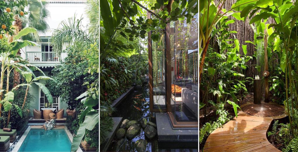 5. จัดสวนนอกบ้านด้วยพืชเขตร้อนชื้นและเติมน้ำให้บ้าน