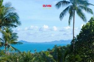 ขาย ที่ดิน ตำบลเกาะพะงัน อำเภอเกาะพะงัน จังหวัดสุราษฎร์ธานี