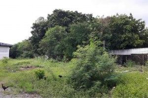 ขาย ที่ดิน ตำบลคลองเกลือ อำเภอปากเกร็ด จังหวัดนนทบุรี