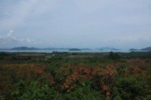 ขายที่ดิน ภูเก็ต บนเขา วิวทะเลสวยมาก ป่าคลอก · ป่าคลอก · ป่าคลอก · ป่าคลอก · ป่าคลอก · ถลาง · ภูเก็ต