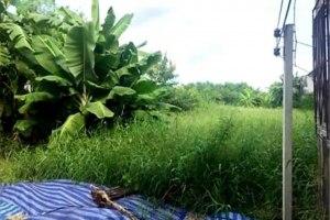 ขาย ที่ดิน แขวงท่าแร้ง เขตบางเขน กรุงเทพมหานคร