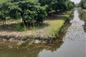 ขาย ที่ดิน ตำบลยุหว่า อำเภอสันป่าตอง จังหวัดเชียงใหม่