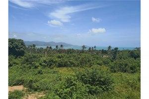 ขายที่ดิน เกาะสมุย สุราษฎร์ธานี