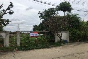 ขายที่ดิน ในโครงการ บุญโต ถนนเลียบคลองประปา บ้านใหม่ · บ้านใหม่ · เมืองปทุมธานี · ปทุมธานี
