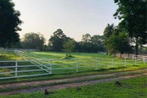 บ้านและฟาร์มม้า โคราช