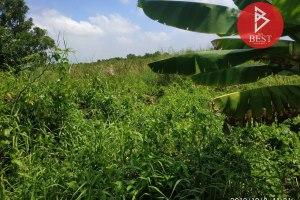 ขายที่ดิน ลำผักกูด · ลำผักกูด · ธัญบุรี · ปทุมธานี