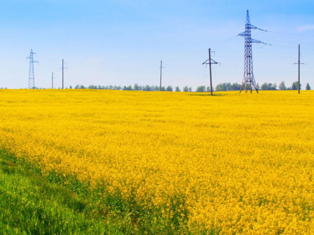 ไฟฟ้าเพื่อเกษตร