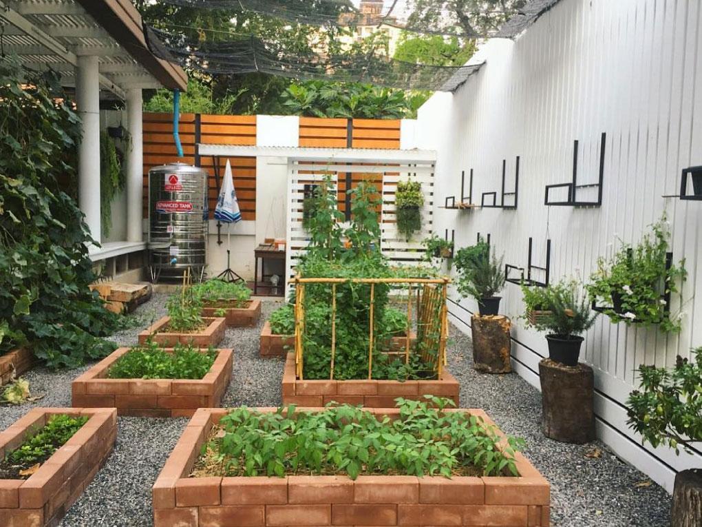 สวนแบบ DIY