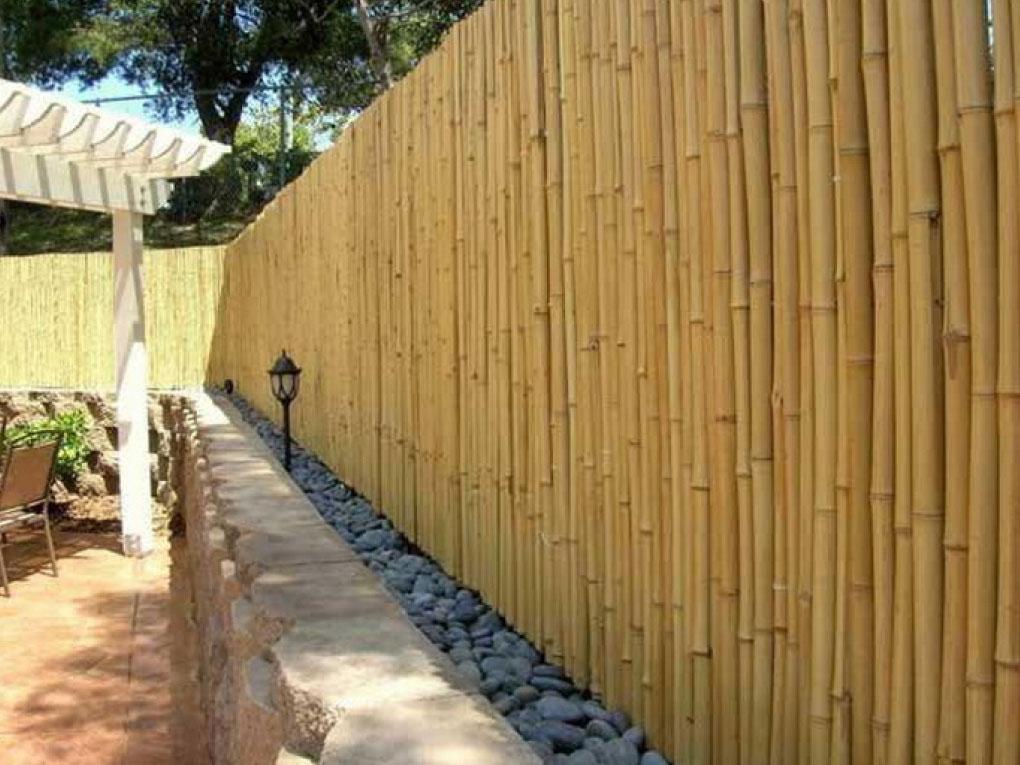 รั้วบ้านไม้ไผ่