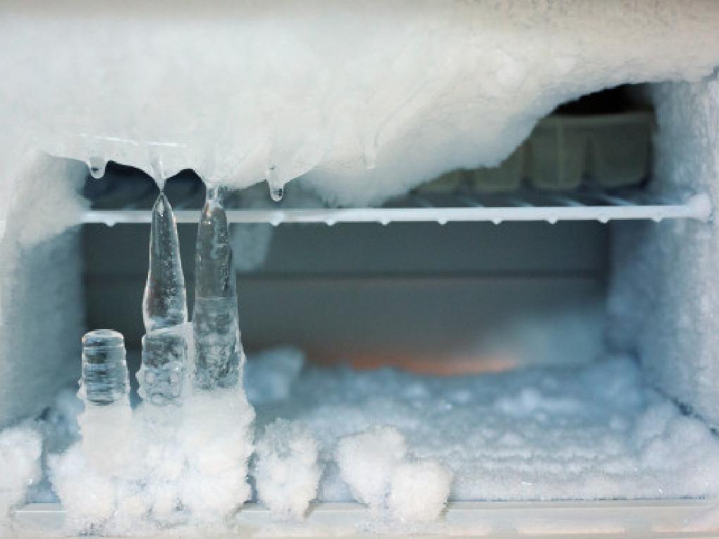 อุณหภูมิของตู้เย็น