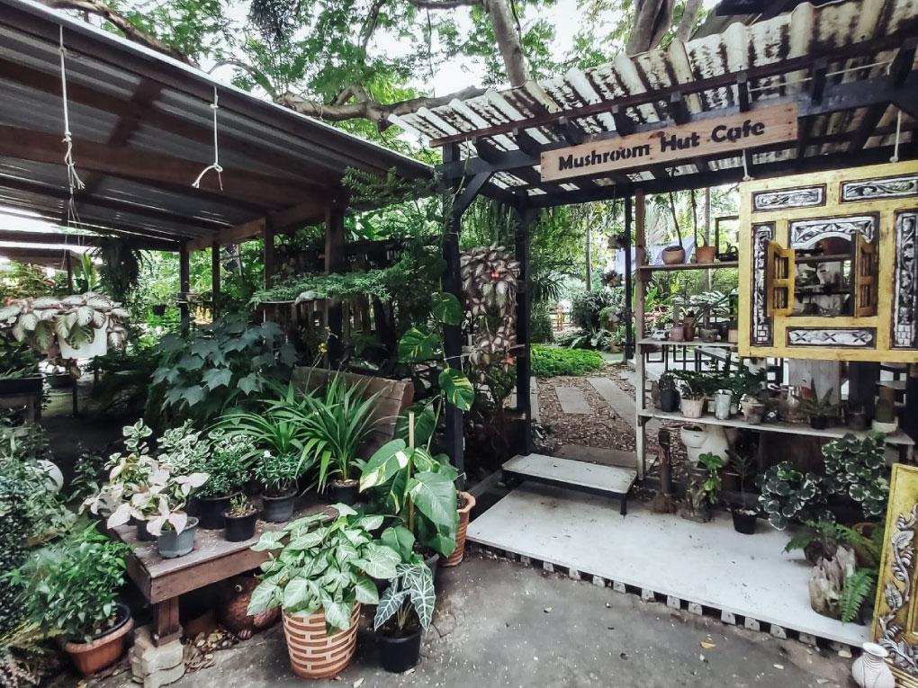 Mushroom Hut Café