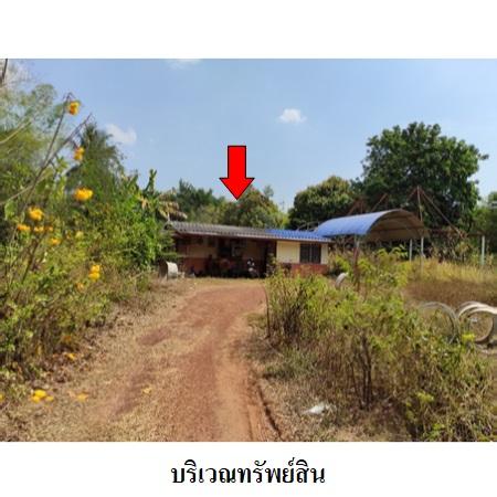 ขาย บ้าน ตำบลบุฝ้าย อำเภอประจันตคาม จังหวัดปราจีนบุรี