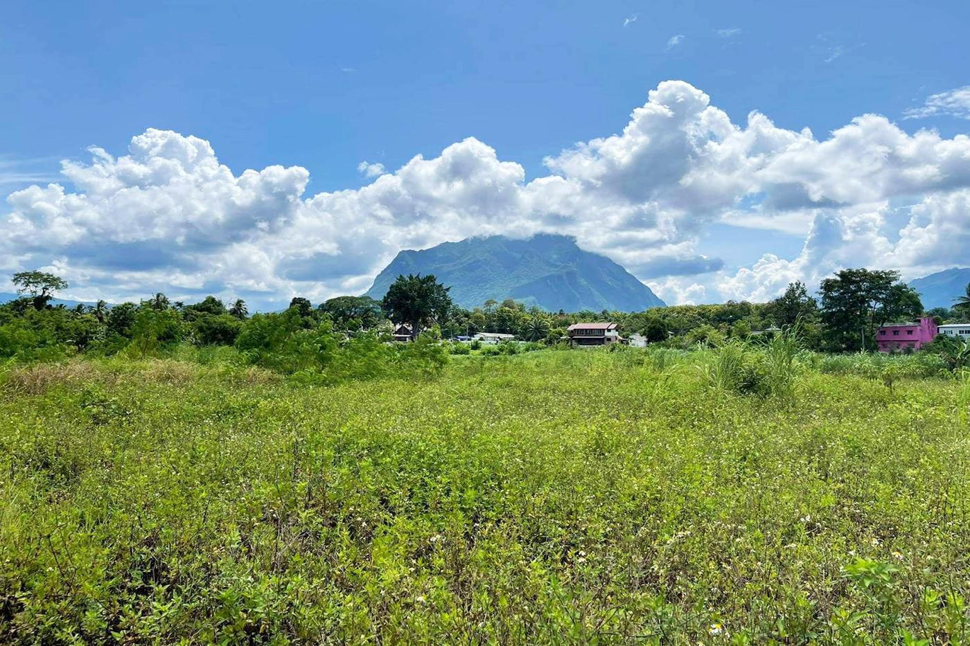 ขาย ที่ดิน ย่าน Chiang Dao