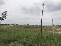 ขาย ที่ดิน ตำบลมาบยางพร อำเภอปลวกแดง จังหวัดระยอง