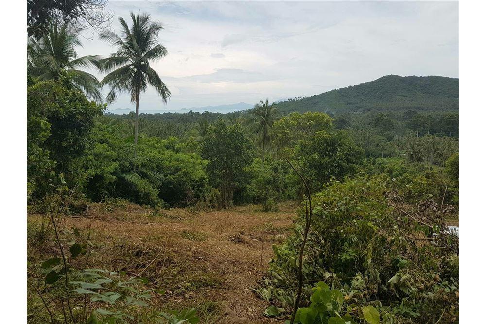 Land for sale in Mae Nam, Koh Samui