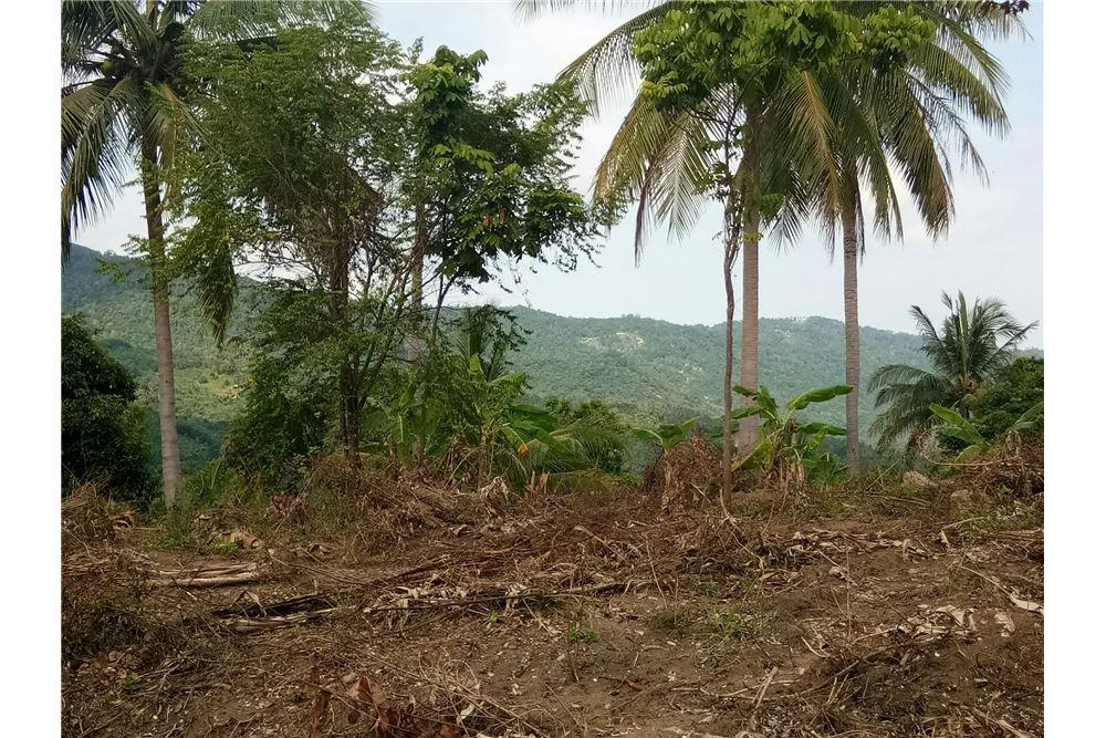 Land for sale in Bophut Hills