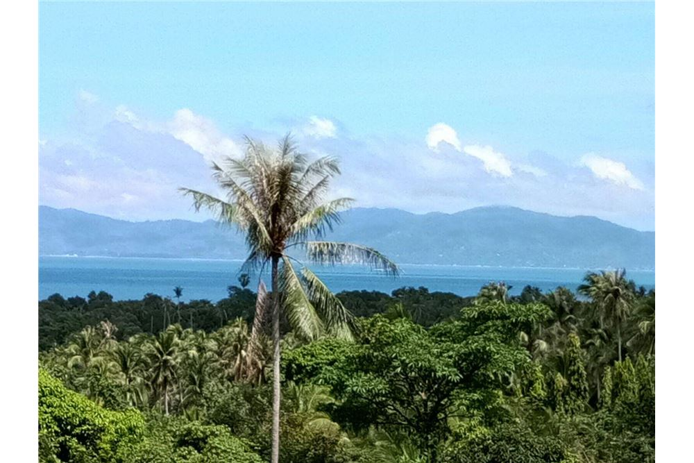 The perfect land for sale in Mae Nam