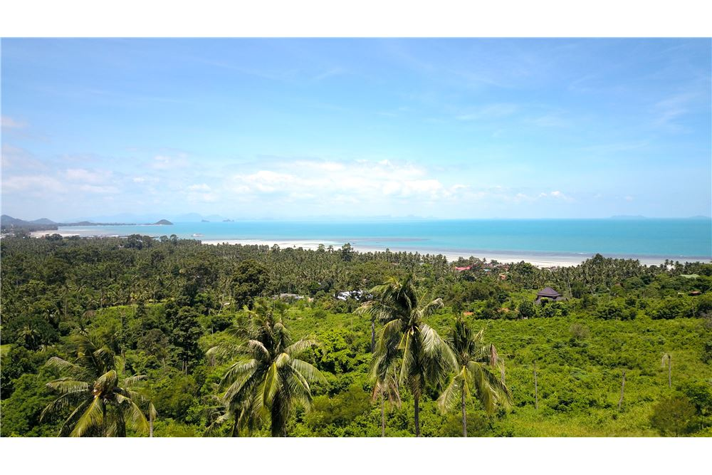 Sea view land for sale in Ang Thong