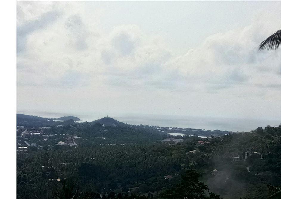 Big Land for sale in Bophut Hills