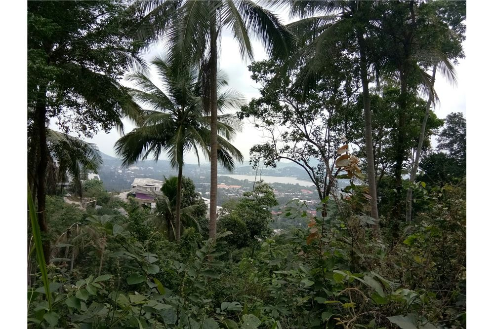 Beautiful sea view land for sale in Chaweng