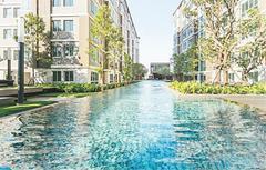 ให้เช่า คอนโด ในโครงการdcondo Campus Resort Rangsit  ตำบลคลองหนึ่ง อำเภอคลองหลวง จังหวัดปทุมธานี
