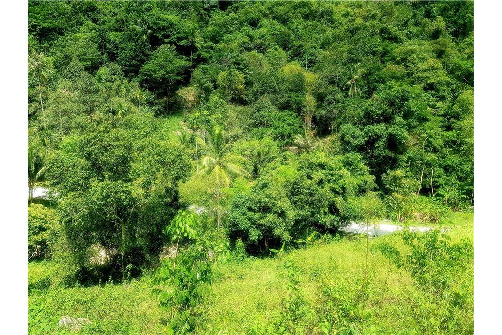 Partly Seaview Land for SALE, Maenam, Koh Samui