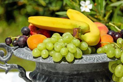 ปลูกผลไม้